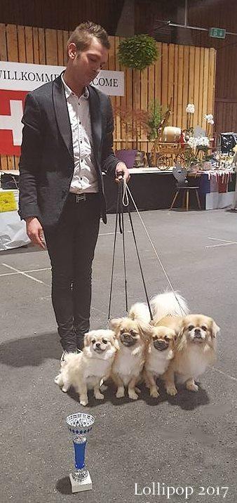 Boo Boo of Lollipop et ses filles Meilleur lot d'élevage Handler Jean-François Lallemand