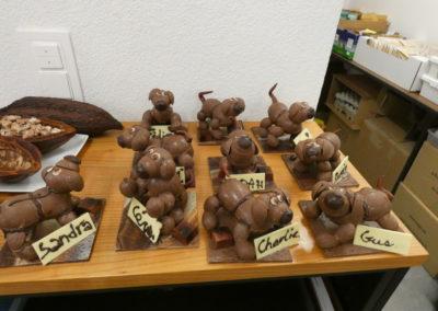 Raffin - Atelier chocolat - SR-TSCS 058